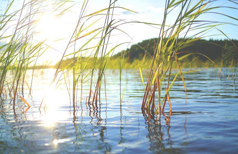 lake-896191_1920
